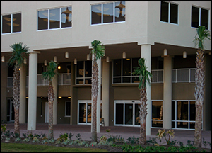 Tidewater Beach Resort FL Rentals